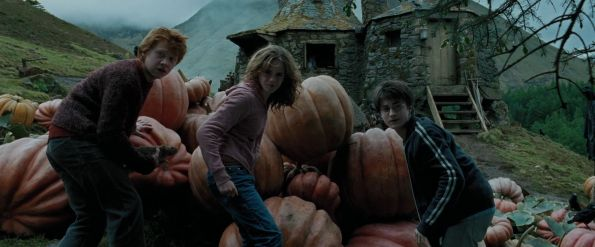 Harry-Potter-And-The-Prisoner-Of-Azkaban-ronald-weasley-17166143-1920-800